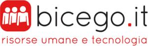 bicego logo